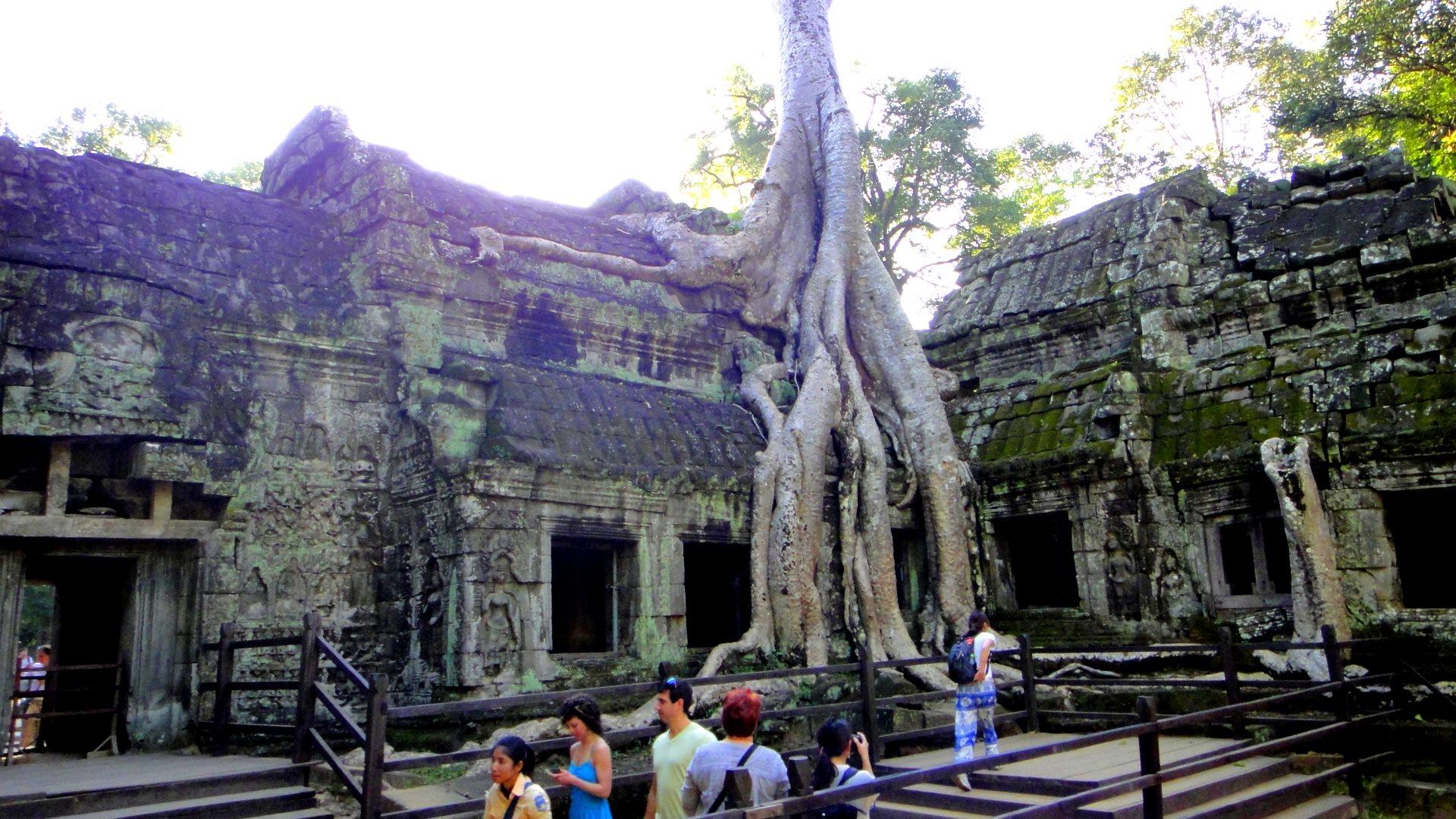 Ta Phrom Tempel
